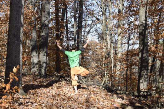 Yoga David Tree Pose 2